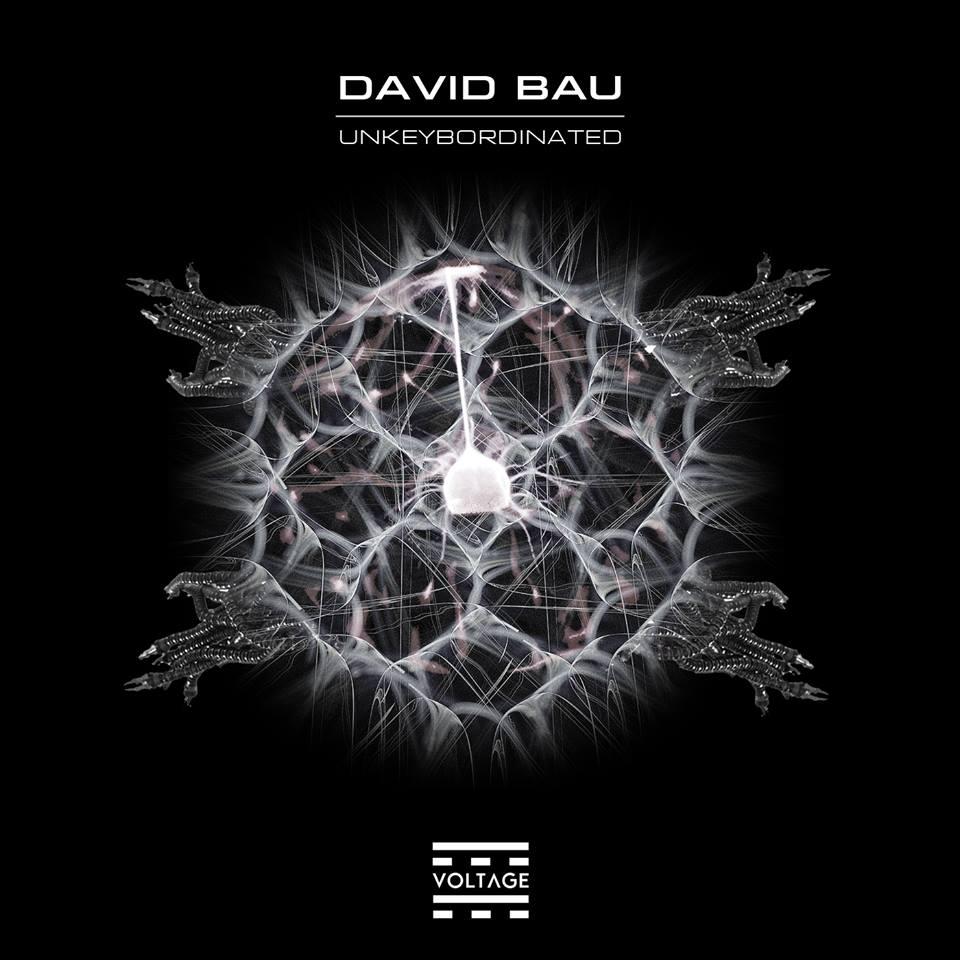 David Bau – Unkeybordinated (Voltage Records)