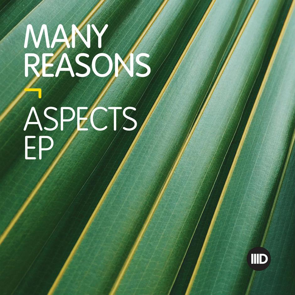 Many Reasons – Aspects (Intec Digital)